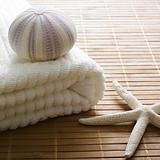 decor zen sea shells