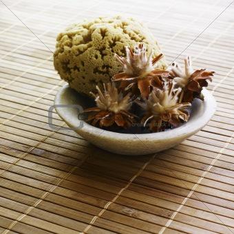massage sea sponge