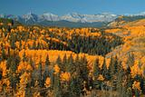 Sheep River valley in fall