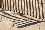 Fence on Bald Head Island, North Carolina.