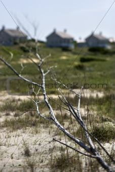 Beach with houses on Bald Head Island, North Carolina.