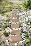 Stepping stone pathway with oyster shells.