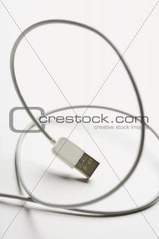 Firewire cord.