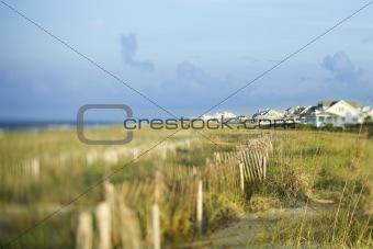 Beachfront houses overlooking ocean.