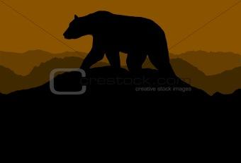 Bear on horizon