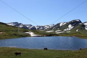 Small lake in Norwegian Fjord