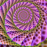 Spotted Pink Spiral