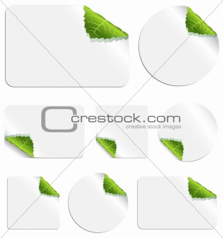 Leaf Stickers