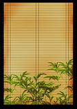 Ancient Japanese reed mat