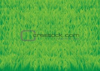 Green_grass_horisontal