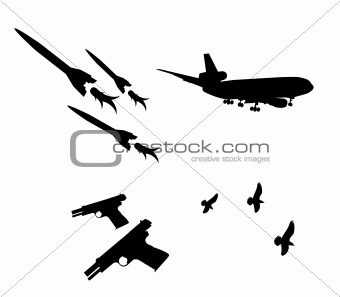 airplane,gun and pigeon