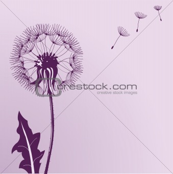 Blow Dandelions