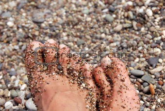 Toes in pebble