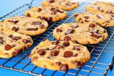 shot of chocolate chip cookies on rack blue background