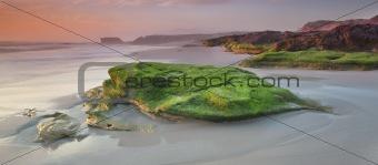 Bay of Moss