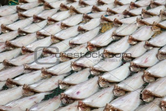 fish market in Asia / South Korea