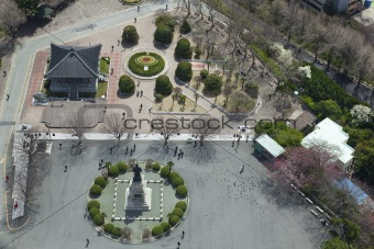 center of the city / aerial view