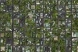 Neighborhood Suburbs