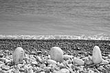 pebbles sea shor