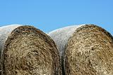 Hay rolls