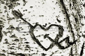 carverd heart