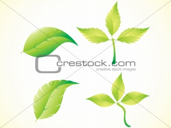 abstract green leafs set