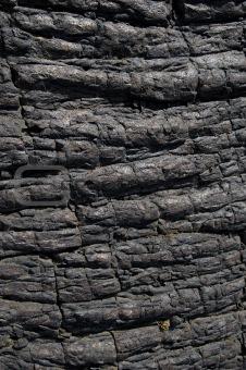 Black Hardened Lava