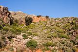 Phrygana landscape