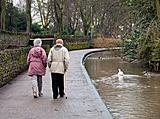 Old couple with swan walking