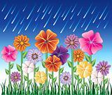 Spring Day 2
