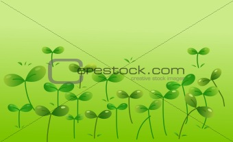 Green seeding