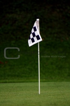 Practice Green Flag