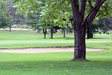Golf Course Landscape