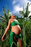 Jungle pregnancy
