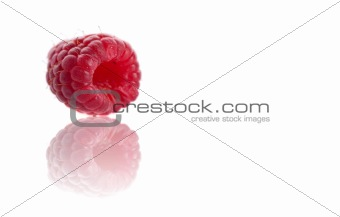 Single piece of raspberry