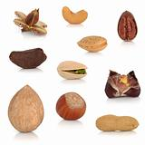 Mixed Nut Collection