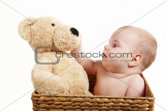 Baby in backet with big bear