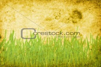 grunge grass background