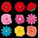 Flowers set, part 4