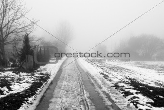 Foggy road in the winter