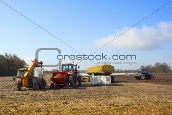 agricultural scene