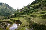 ifugao rice terraces batad