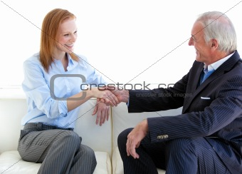 Smiling business people shaking hands sitting on a sofa