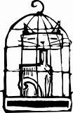 Cat in Cage #2