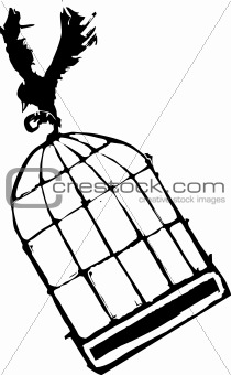 Bird Carrying Birdcage