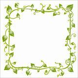 Floral leaf classic frame