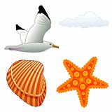 Seagull and shell