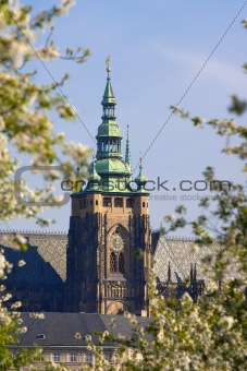 prague, czech republic - st. vitus cathedral at hradcany castle in spring