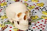 Skull on playing cards and money