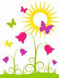 flowers, butterflies and sun